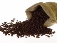 kavovina