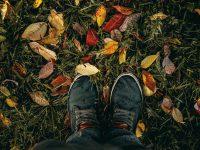 jeseň
